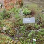 Jardins Lagrange